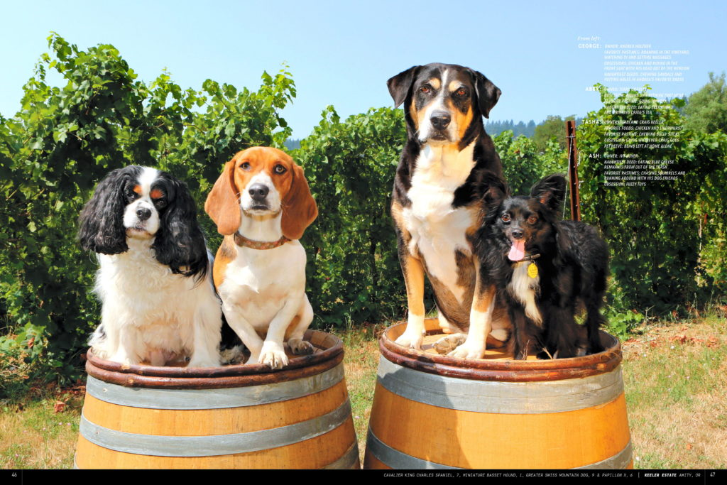 Oregon Wine Dogs Keeler