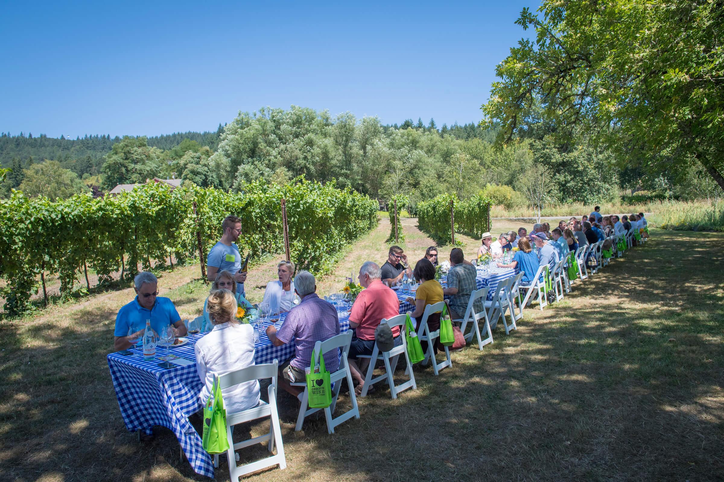 IPNC lunch at Keeler Estate Vineyard