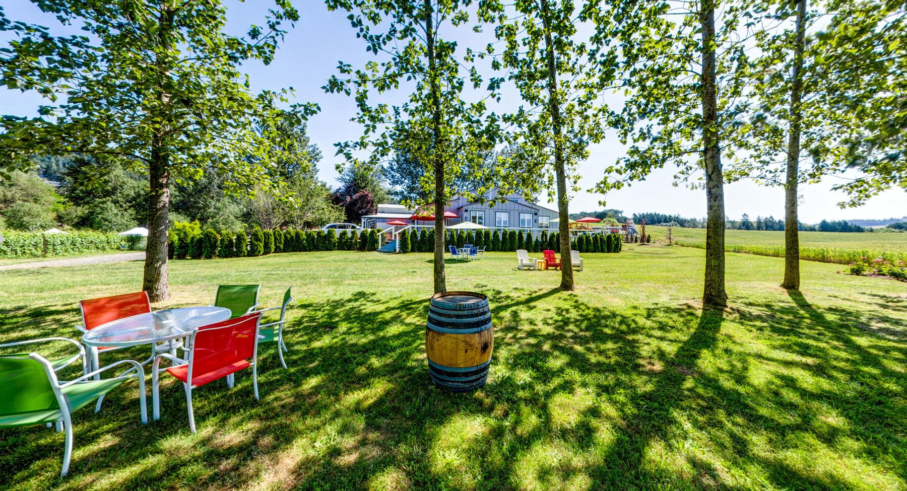 Keeler Estate Tasting Lawn